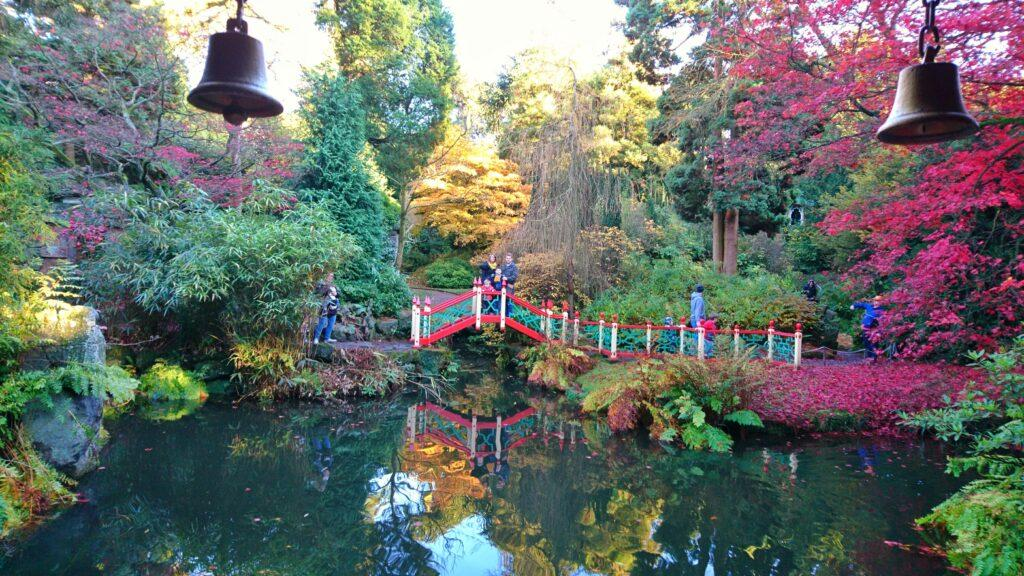 Великолепные сады и парк Биддульф Грейндж Гарден, Англия