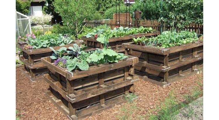 Как обустроить огород на даче