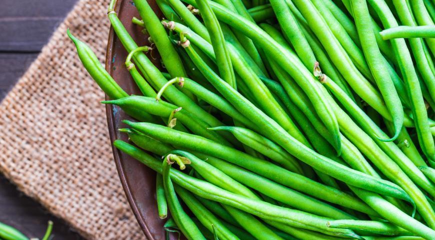 Стручковая фасоль – посадка, выращивание, сбор урожая, хранение
