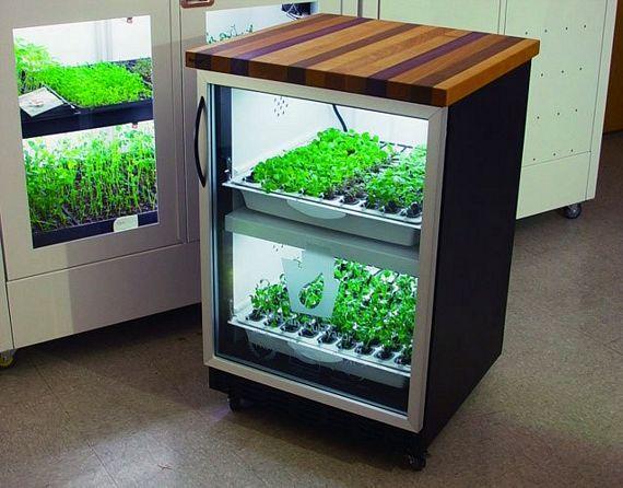 Умный гидропонный огород на вашей кухне