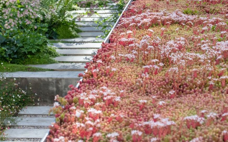 Идеи планировки участка - как создать идеальный сад