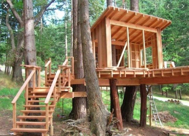 Домик на дереве - идеи и рекомендации по постройке